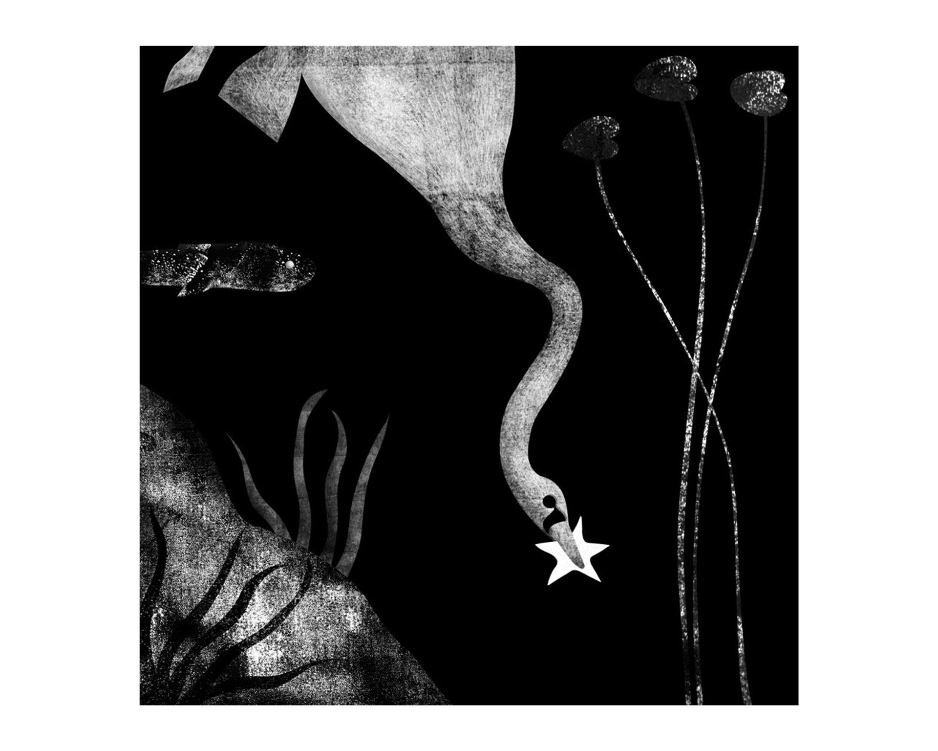 valentinabolognini-illustrazione-bcbf-10-02
