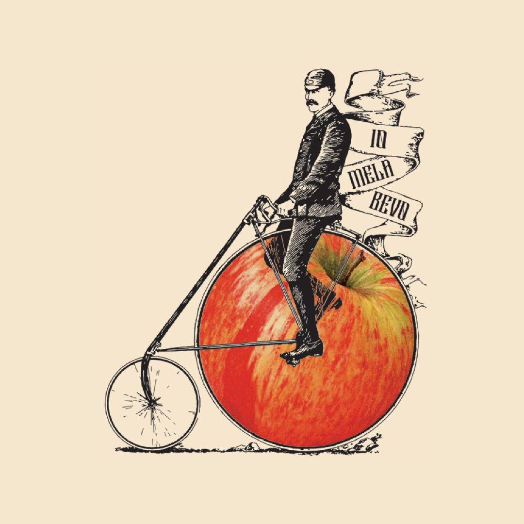 Sidro artigianale label illustration