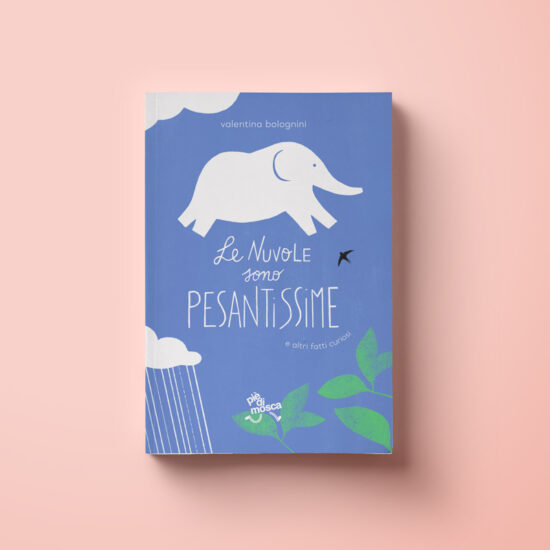 valentina bolognini-le nuvole sono pesantissime - book cover