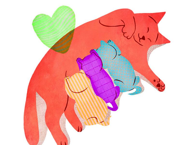 valentina bolognini festa della mamma - gatta